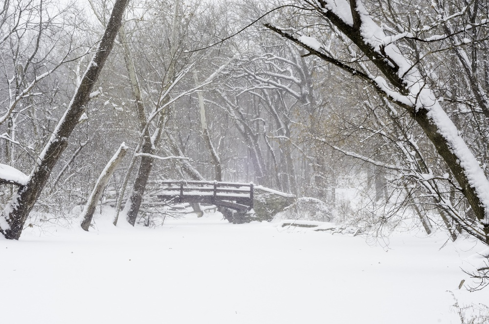Wintry woods whiteout Footbridge over stream covered with snow during a winter storm in northern Illinois, USA.jpeg