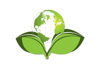 Green Commercial Cleaning Companies